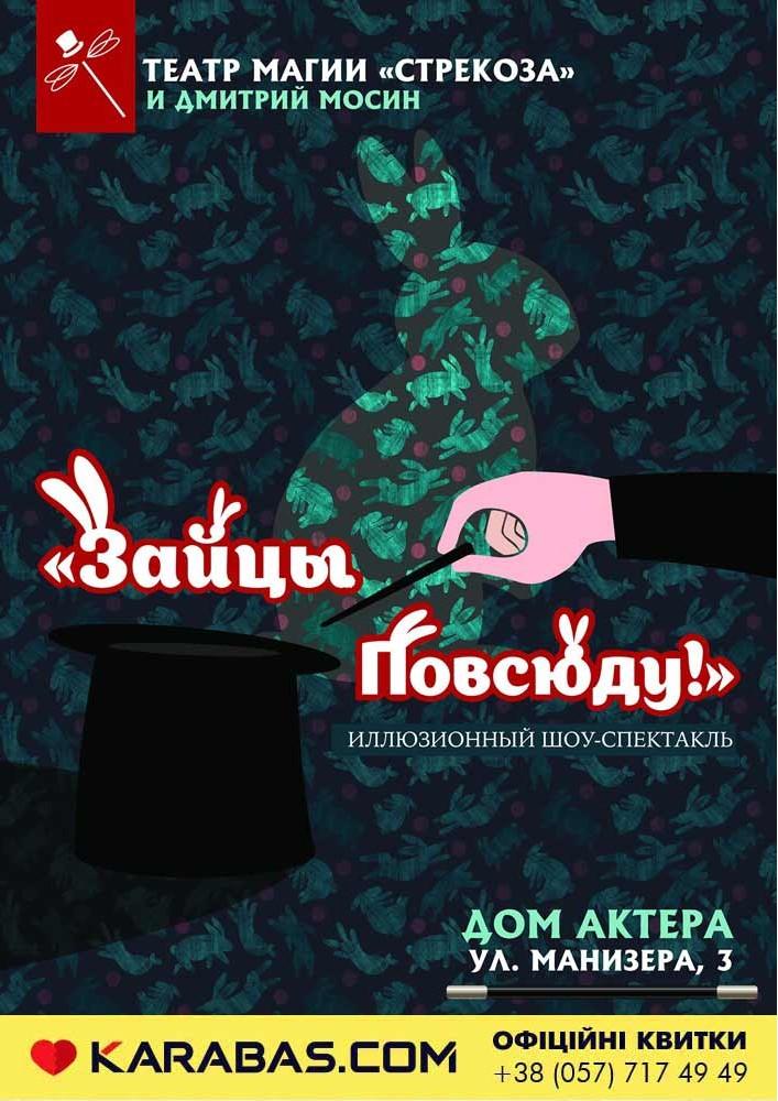 Театр магии «Strekoza».  Шоу-спектакль для детей «Зайцы повсюду!» Харьков