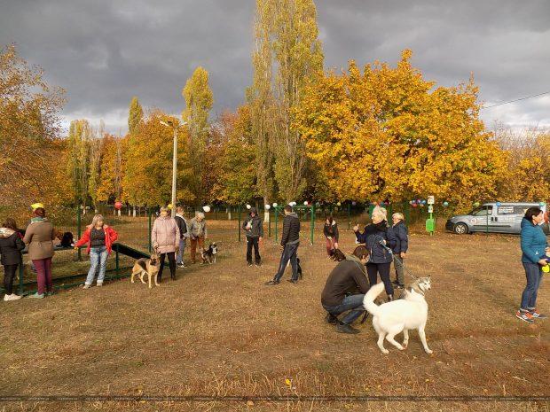 В Индустриальном районе открыли площадку для выгула собак