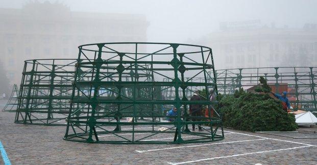 Елку на площади Свободы установят в течение трех недель