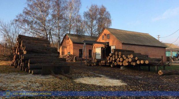 Чиновникам лесхоза в Харьковской области объявлено подозрение в хищении леса почти на сто миллионов гривен