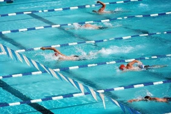 Харьковские пловцы завоевали золотые награды Кубка Украины