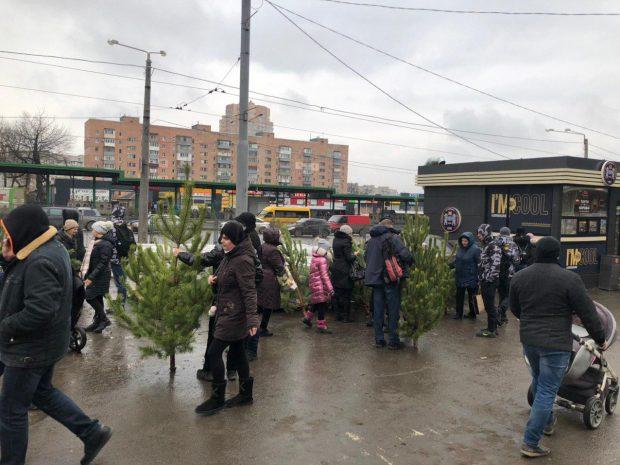 В Харькове активисты раздавали прохожим ёлки, которые продавались без разрешительной документации