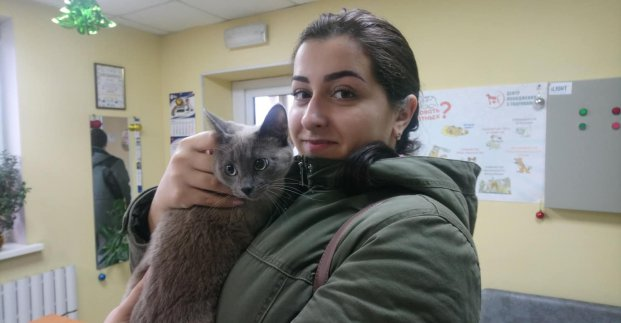 В Центре обращения с животными нашли хозяев для 2 тысяч питомцев