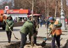 В прошлом году в Харькове посадили несколько тысяч деревьев - горсовет