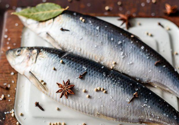 Харьковский зоопарк покупает рыбу дороже, чем отель для депутатов