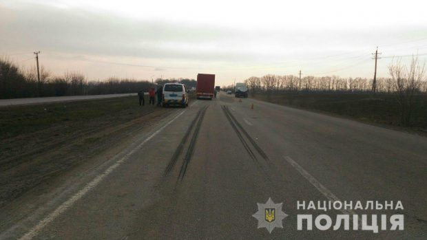 Под Харьковом фура насмерть сбила пешехода