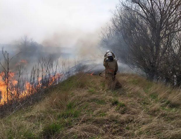 За неделю на открытых территориях Харьковщины произошло более 300 пожаров