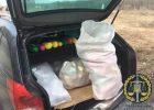 Харьковчанин перевозил в автомобиле 110 кг наркотиков - прокуратура