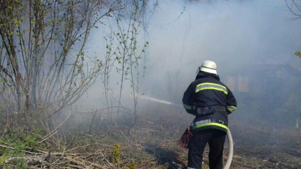 Под Харьковом борцы с сухостоем едва не сожгли жилые дома