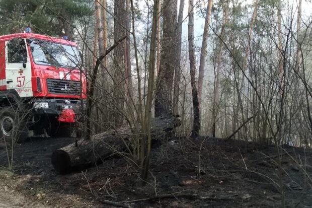 На Харьковщине огонь охватил 20 гектаров территории лесничества
