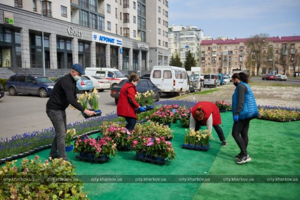 Бизнесмены подарили харьковским больницам 10 тысяч цветов