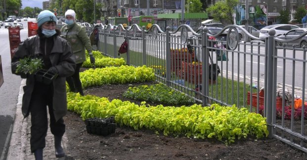 Озеленители высаживают цветы на проспекте Науки