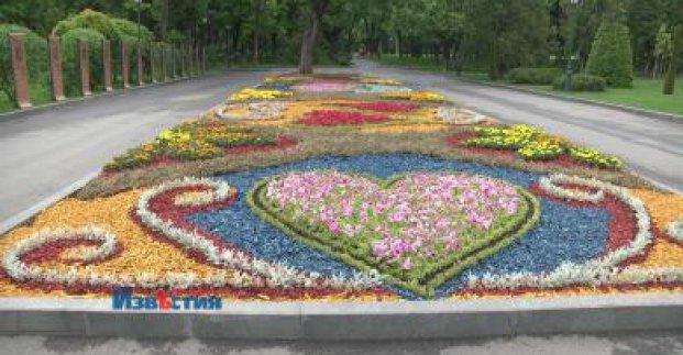 В саду Шевченко создают новые клумбы