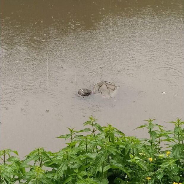 В Харькове тело мужчины, которого искали родственники, нашли в реке