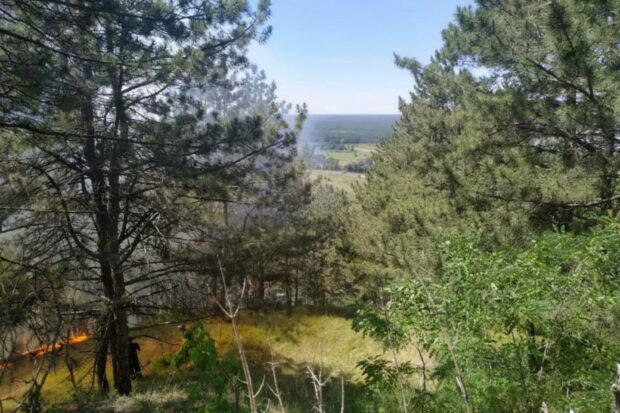 Под Харьковом горел лес