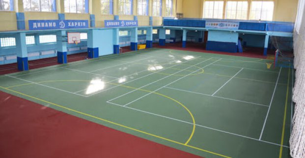 Мэрия просит передать в коммунальную собственность спорткомлекс «Динамо»