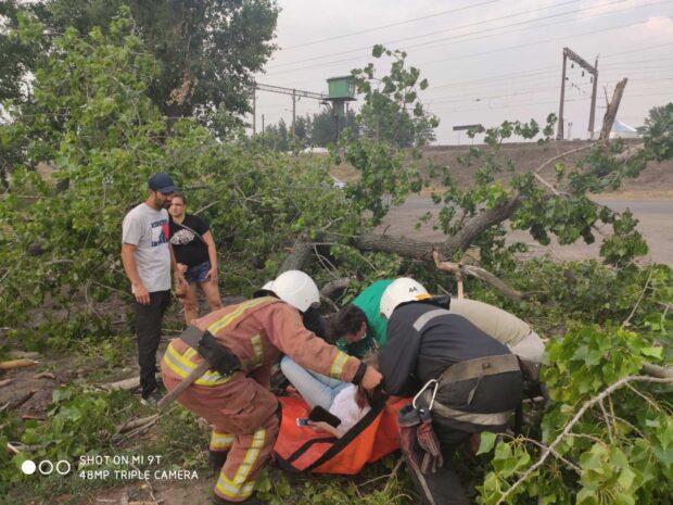 Под Харьковом в результате порыва ветра на женщину упало дерево