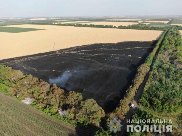 Под Харьковом сгорело 10 гектар пшеницы: полиция открыла уголовное производство