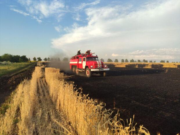 В Харьковской области на площади 12 000 кв.м. горело поле пшеницы