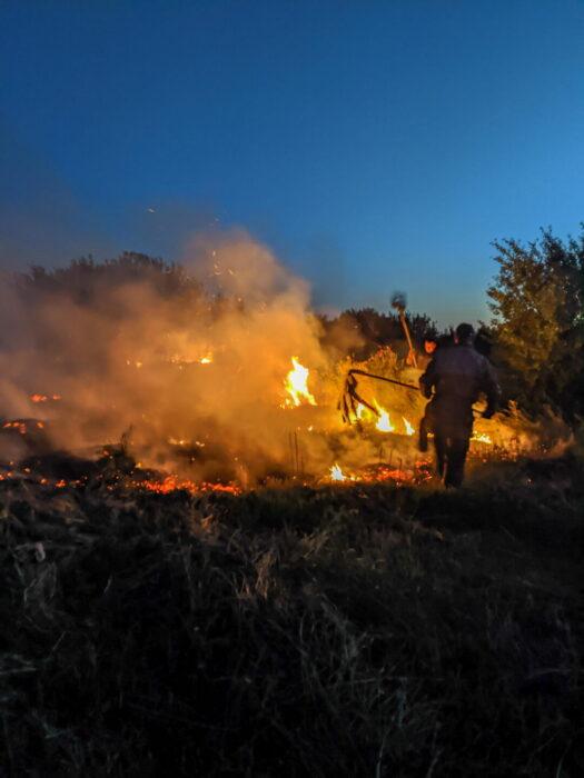 В Лозовой возле центрального кладбища произошел масштабный пожар