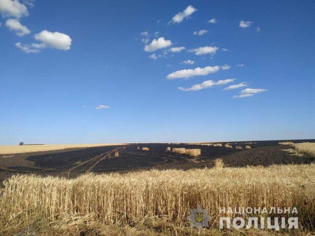 Под Харьковом горело поле пшеницы: полиция подозревает в поджоге детей