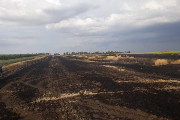 На Харьковщине горело ячменное поле