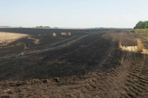Под Харьковом горело пшеничное поле
