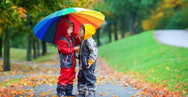 Завтра в Харькове - до 19 градусов тепла и дождь