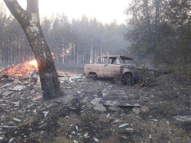 Продолжается ликвидация масштабного лесного пожара в Харьковской области - МВД (видео)
