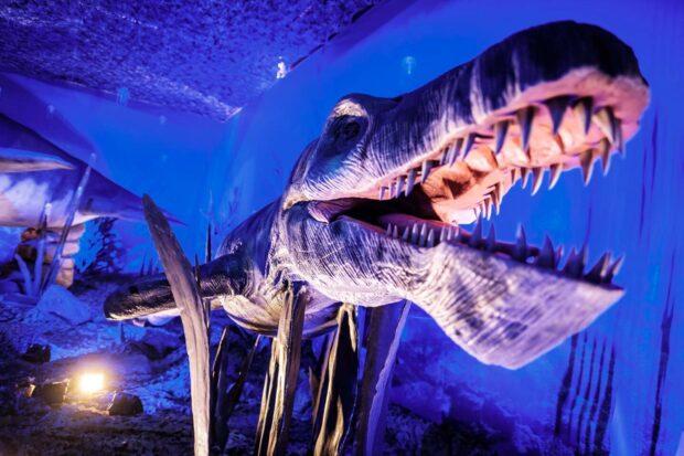 Динозавры морских глубин