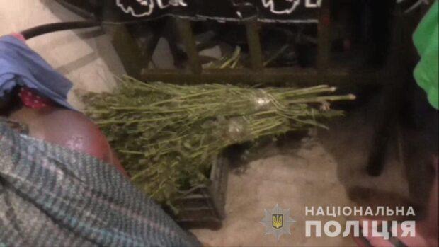В Харьковской области женщина сообщила в полицию, что ее сын дома хранит и употребляет наркотики