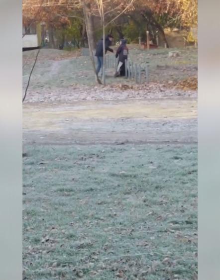 В Харькове полиция ищет мужчину, который избивал собаку