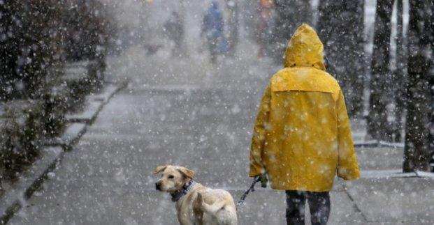 Завтра в Харькове - до 2 градусов тепла и осадки