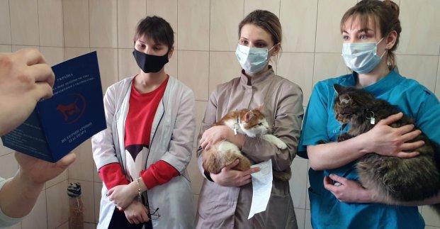 В ветклинике приюта для животных открылась бесплатная школа