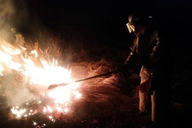 В Харьковской области случилось 19 пожаров из-за выжигания сухостоя