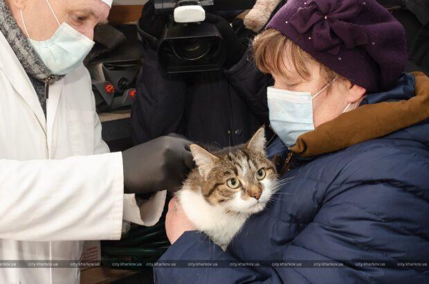 В Харькове началась ежегодная вакцинация домашних животных