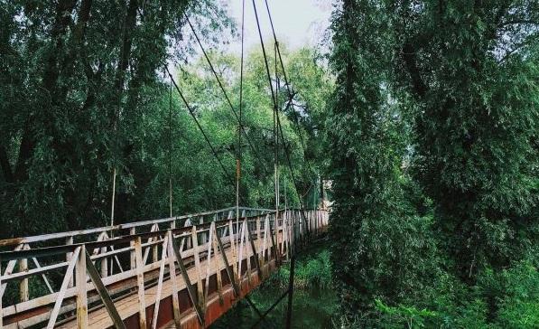 Чапаевский подвесной мост