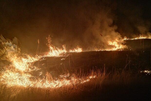 В Харьковской области спасатели 115 раз тушили возгорание сухостоя и мусора