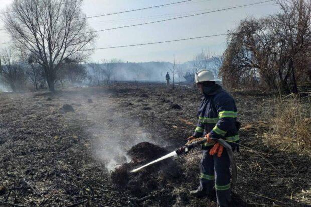 В Харьковской области мужчина, который поджог сухостой получил серьезные ожоги
