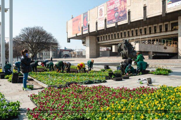 В Харькове начали высадку цветов