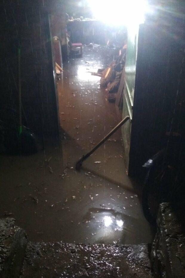 В Изюме из-за сильного ливня людям подтопило дома
