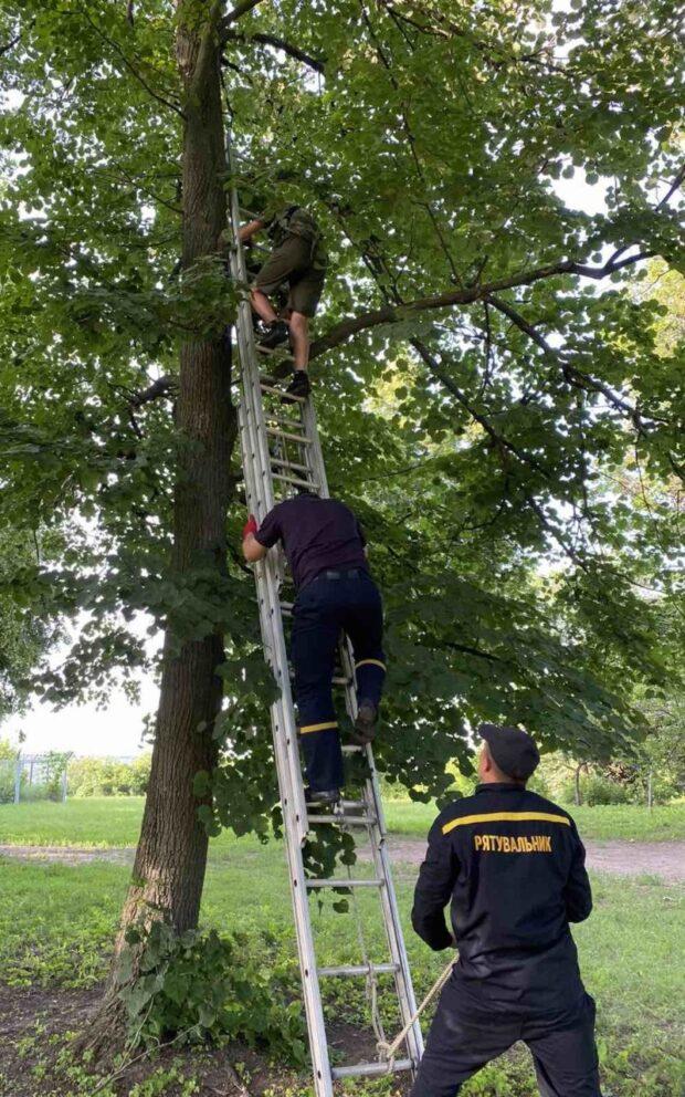 Под Харьковом спасатели спустили с дерева подростка, который залез за мячом