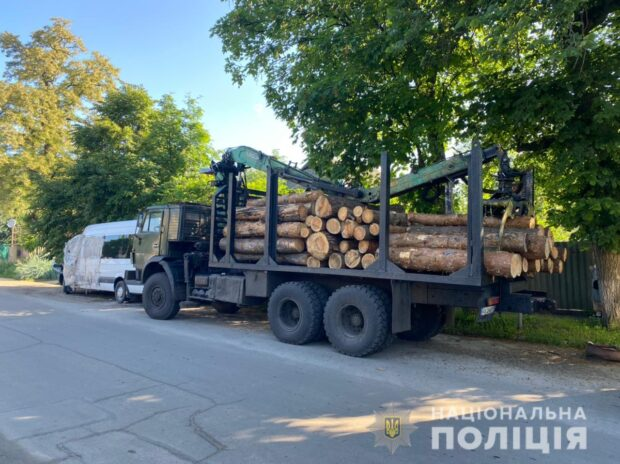 На Харьковщине разоблачили незаконную порубку древесины