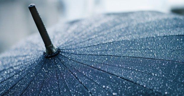 Завтра в Харькове - до 16 градусов тепла и дождь