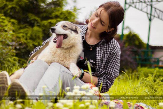 В харьковском приюте для животных состоялся благотворительный фотопикник