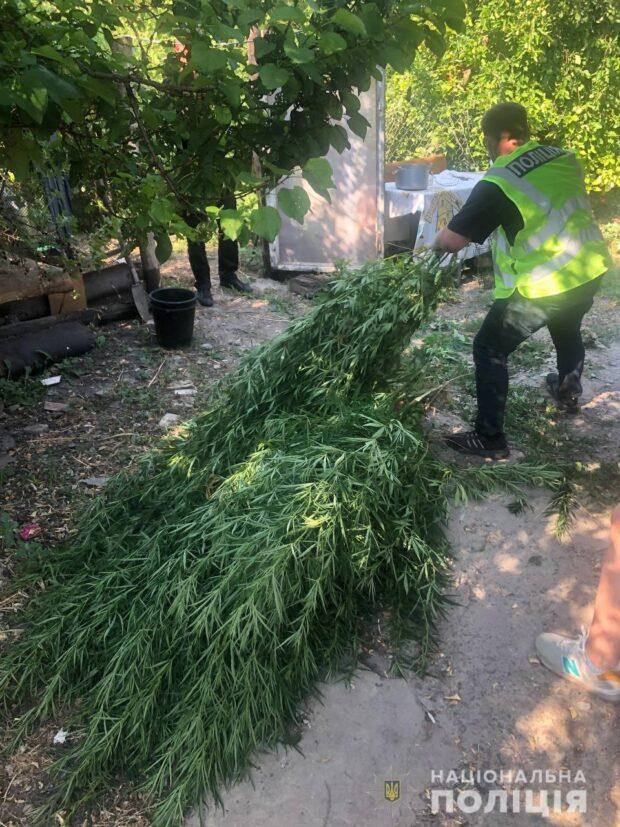 Под Харьковом мужчина на огороде обустроил наркоплантацию