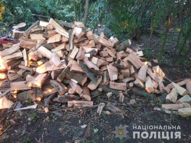 В Харьковской области задержали группу мужчин, которые незаконно вырубали деревья