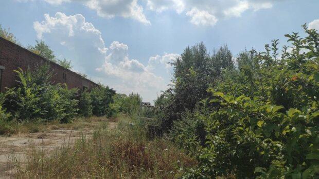 Подростка, которого подозревают в убийстве 6-летней девочки в Старом Салтове, поместили в спецприемник