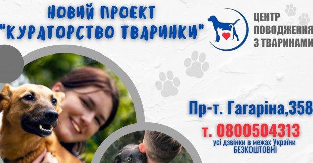Харьковчанам предлагают стать опекунами животных из городского приюта