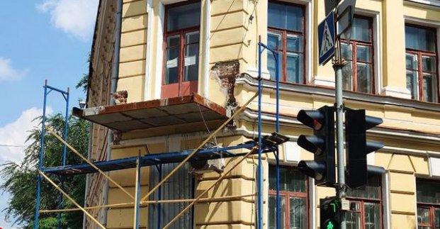 В мэрии говорят, что реконструкцией балкона Харьковского художественного музея занимается облгосадминистрация